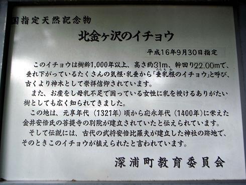 2011.5.29 186-1.jpg